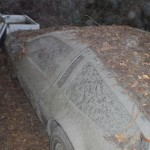 abandoned-delorean-found-in-a-forrest-photo-gallery-medium_4