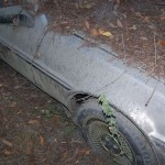 abandoned-delorean-found-in-a-forrest-photo-gallery-medium_8